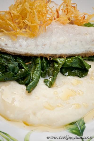 Filetto di Orata su crema di mozzarella di bufala  e spinaci, con infuso al limone